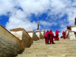 Tibet Tour: Tibet Best in 5 Days